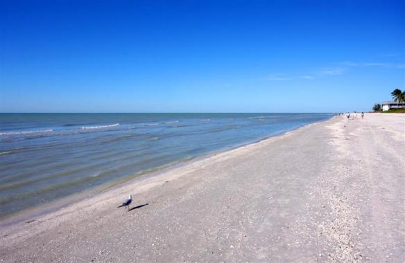 Beach 1 (Medium)