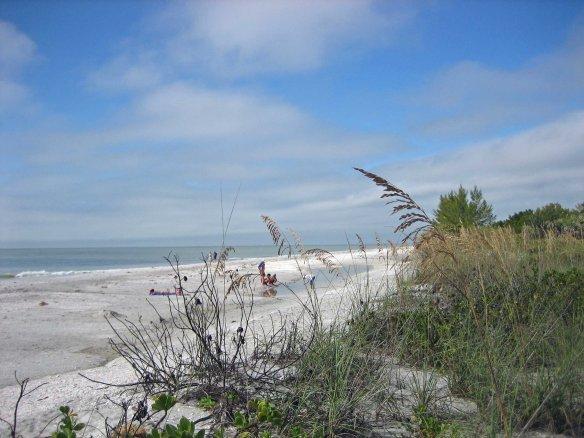 2013-01-04 BeachStoop