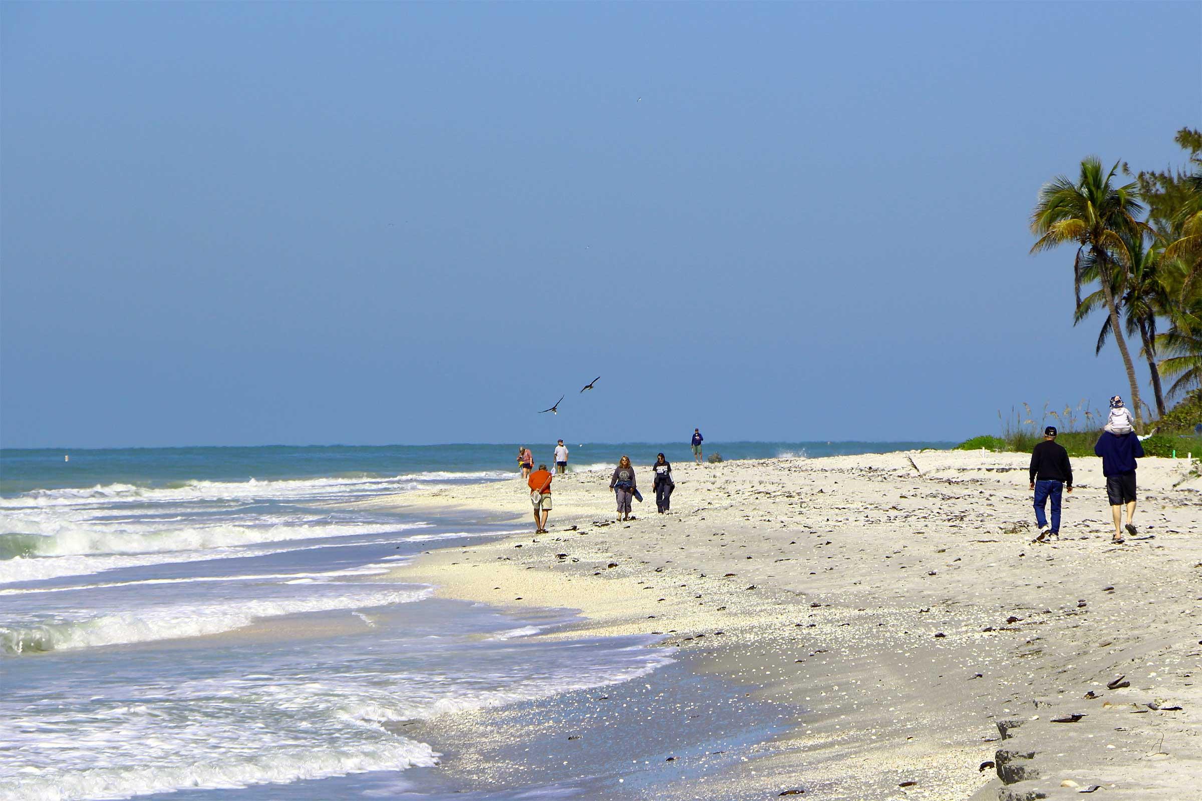 Tropical Island Beach Ambience Sound: Pre-Easter Sanibel & Captiva Islands Real Estate