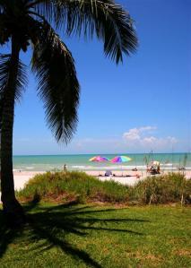 Beach1(Large)