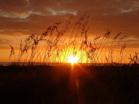 Doris sunset