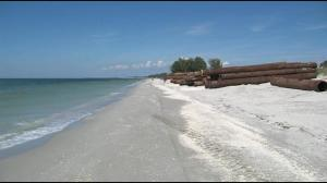 Captiva Beach re-nourishment (10/13) photo by NBC-2