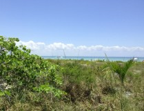 Gulfside City Park looking east