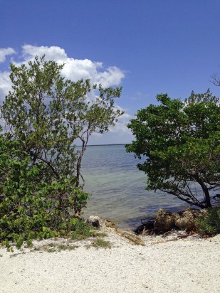 Overlooking San Carlos Bay