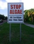 stop algae