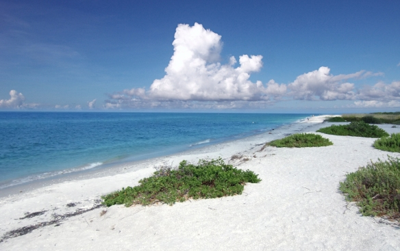 sanibel-island-beach-white-sand