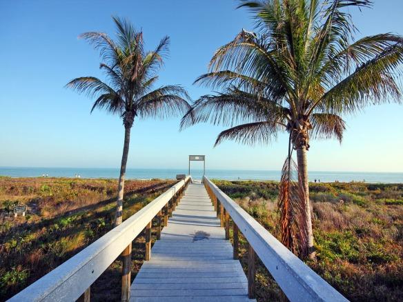 Boardwalk a
