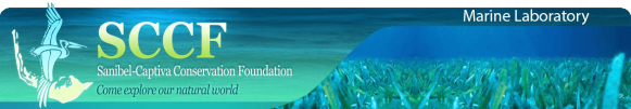 sccf marine lab header