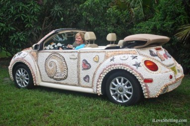 2016 Shell-Love-Bug-driver-seashells
