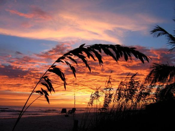 sanibel sunset pinterest.jpg