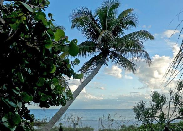 09-15-16-beach-pix