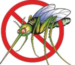 mosquito-clip-art-mosquito-clipart-6