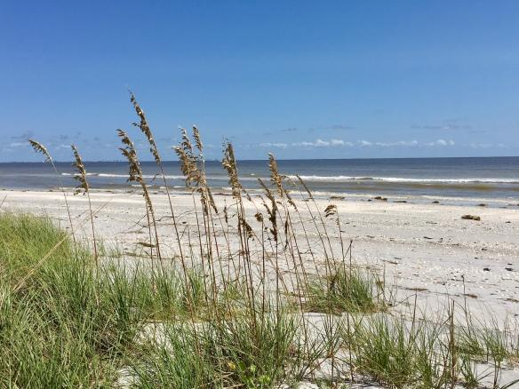 2017-09-11 beach2.jpg