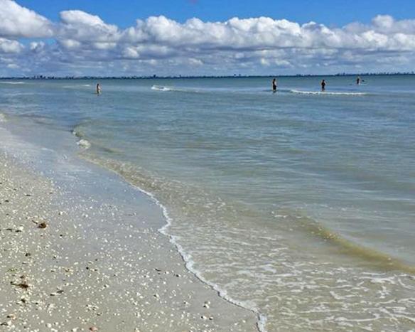 11-24-2017 beach