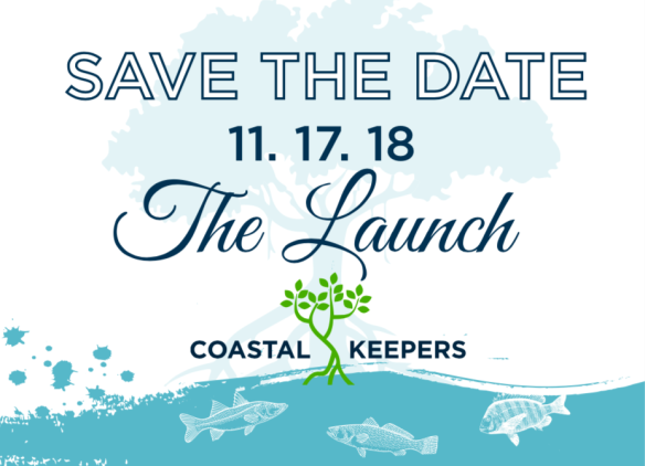 the launch 2018